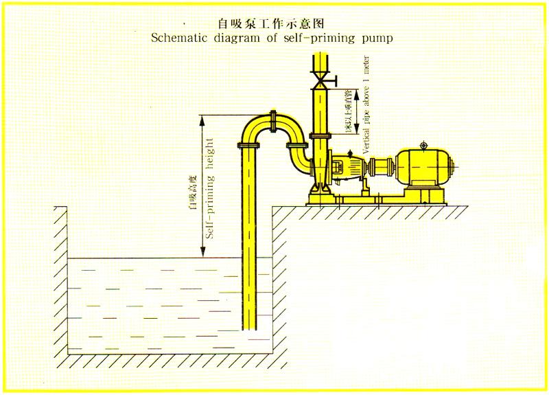 自吸式离心油泵吸入高度示意图