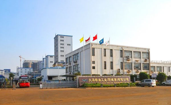 广西大海粮油大豆磷脂油输送泵用远东不锈钢齿轮泵案例