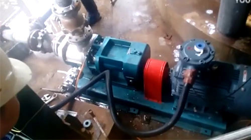远东泵业WKse6双螺杆泵-杭州浙晨橡胶使用现