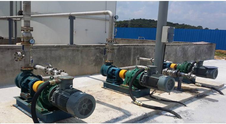 甘油输送泵NYP111B-RU-T2-W11不锈钢高粘度泵