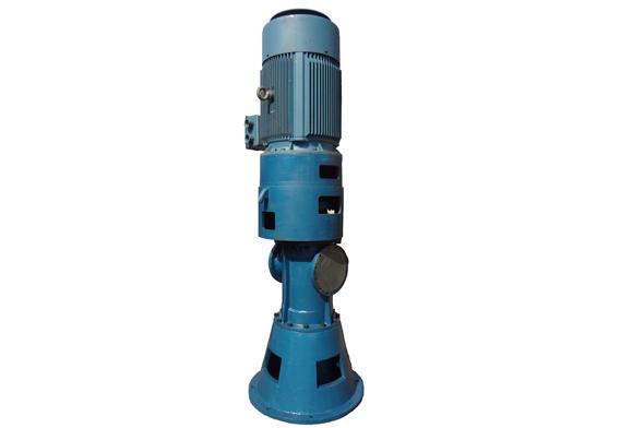 V立式双螺杆泵