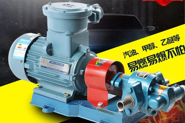 防爆齿轮式输油泵