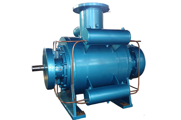 油气混输双螺杆泵